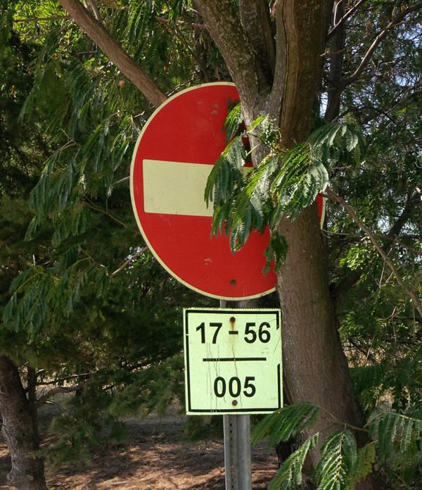 Figure 27. Occluded sign. Trimming foliage will improve the visibility of this sign.