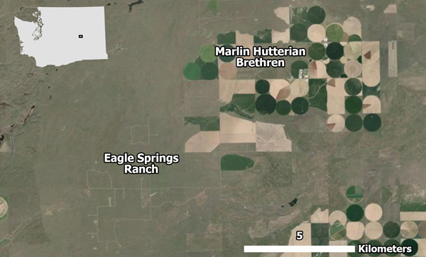Figure 12. Eagle Springs Ranch and Marlin Hutterian Brethren neighboring each other in one of the map's empty spaces. Source: Esri Imagery basemap.
