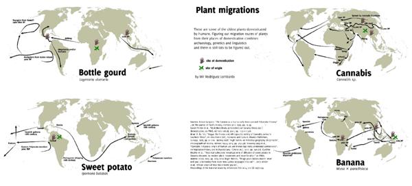 Plant Migrations.