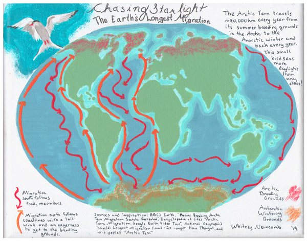 Chasing Starlight: The Earth's Longest Migration.