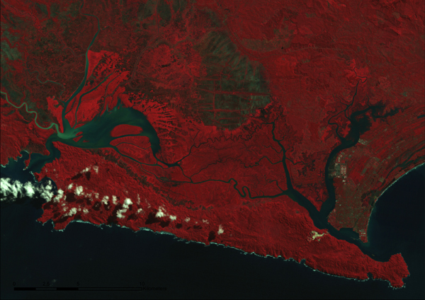 Figure 8. Section of a Landsat image depicting the Segara Anakan lagoon in 1993. Landsat TM, resolution: 30m, date of acquisition: 23.05.1993. Retrieved from BTIC Dataport, Indonesia.