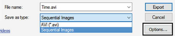 Figure 14. The ArcGIS Time Slider Export Video window, and the Options button for further customization.