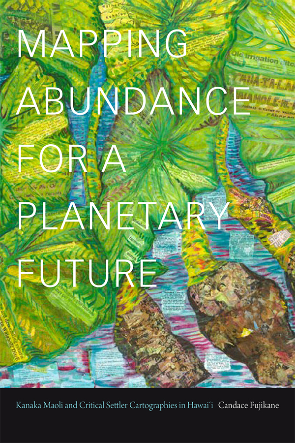 Mapping Abundance book cover